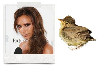 Celebrity Beauty: Star Beauty Tips and Secrets - Vogue